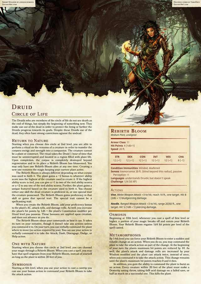 Druid 5e (5th edition) in dungeons and dragons