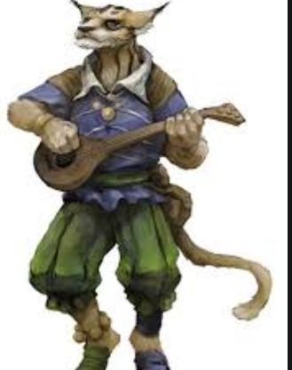 Tabaxi Race 5th edition for races